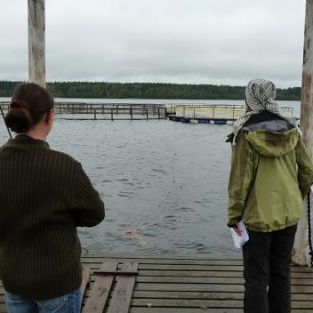 14 Entisen laivalaiturin paikka Kotkaniemessä